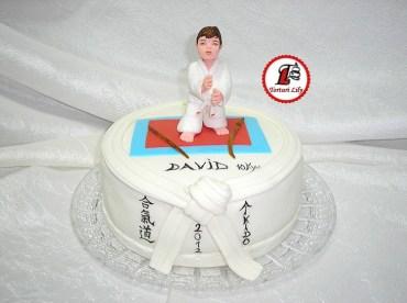 tort aikido 4