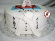 tort aikido 6