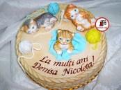 tort pisicute 13
