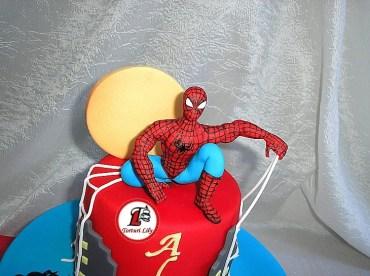Tort Spiderman pt Alex_2
