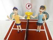 tort tenis 2