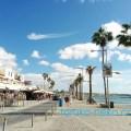 パフォス港でヤシの木が青空の下でそよ風になびかれている綺麗な写真 画像