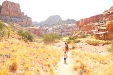 Hiking down the Grand Wash