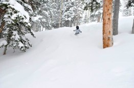 If it's untracked and through the trees, he'll hit it.