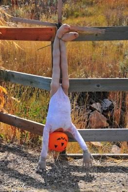 An upside down ballerina one