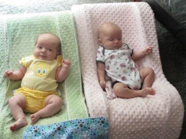 Bridget and Tim's Minnesota Twins