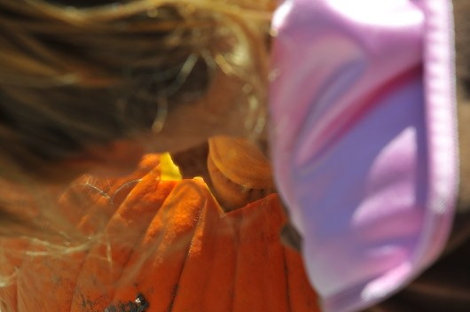 Tegan, elbow deep in a pumpkin.