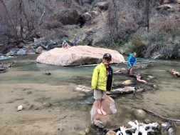 Monkey business in the Virgin river