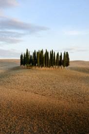 Classic Tuscan photo near Pienza