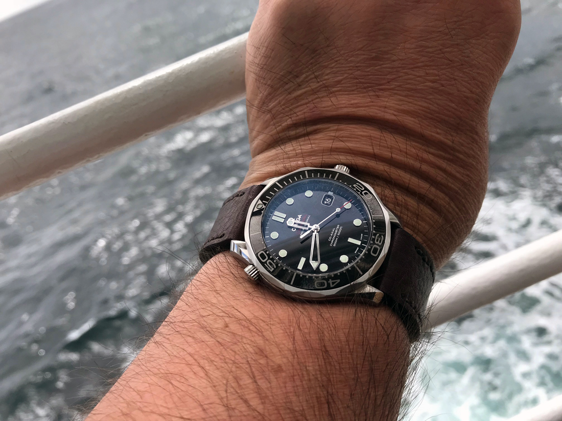 Omega Seamaster on Aegir leather with dark brown stitching. © Jeremy Newell