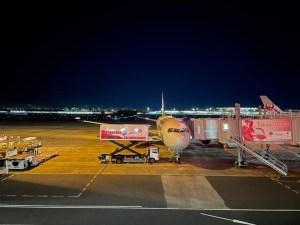JAL初日の出・初富士フライト2021搭乗機