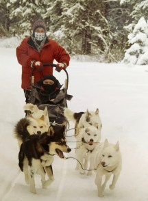 dogsledding - 36