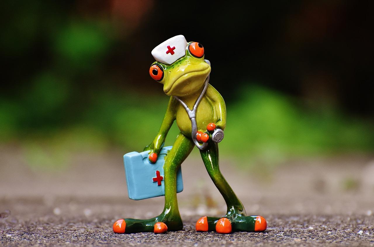 蛙の人形に看護師のコスプレ