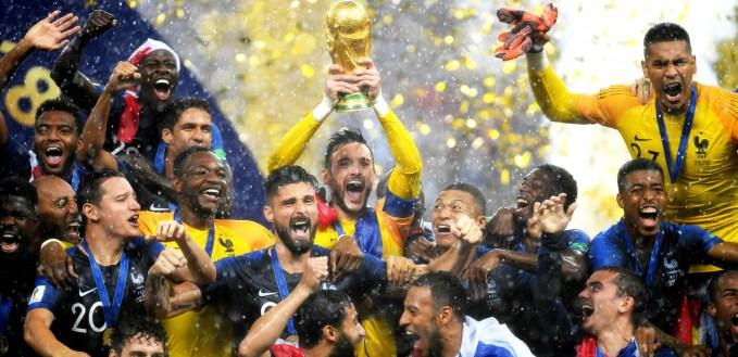 Image result for hugo lloris world cup