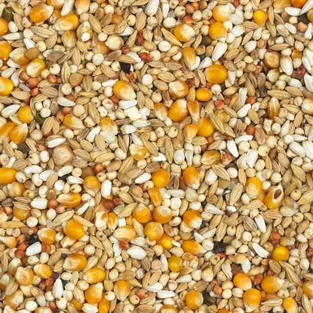 Vanrobaeys-Casaert-Depurative-418-20kg