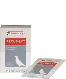 Versele-Laga-Oropharma-Recup-Lyt-240g