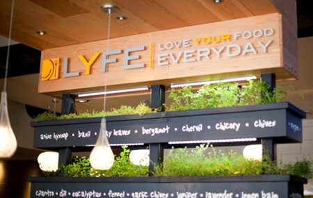 Chicago\'s LYFE Kitchen Set to Debut First New York Outpost ...