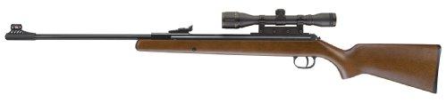 RWS 0.22 pellet model 34