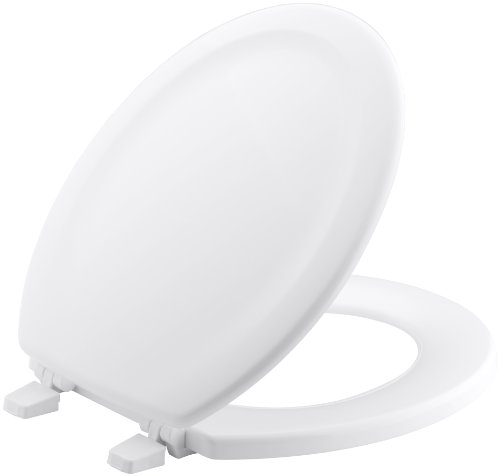 Excellent Most Comfortable Best Toilet Seat Reviews 2019 Creativecarmelina Interior Chair Design Creativecarmelinacom