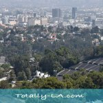 Best Los Angeles View