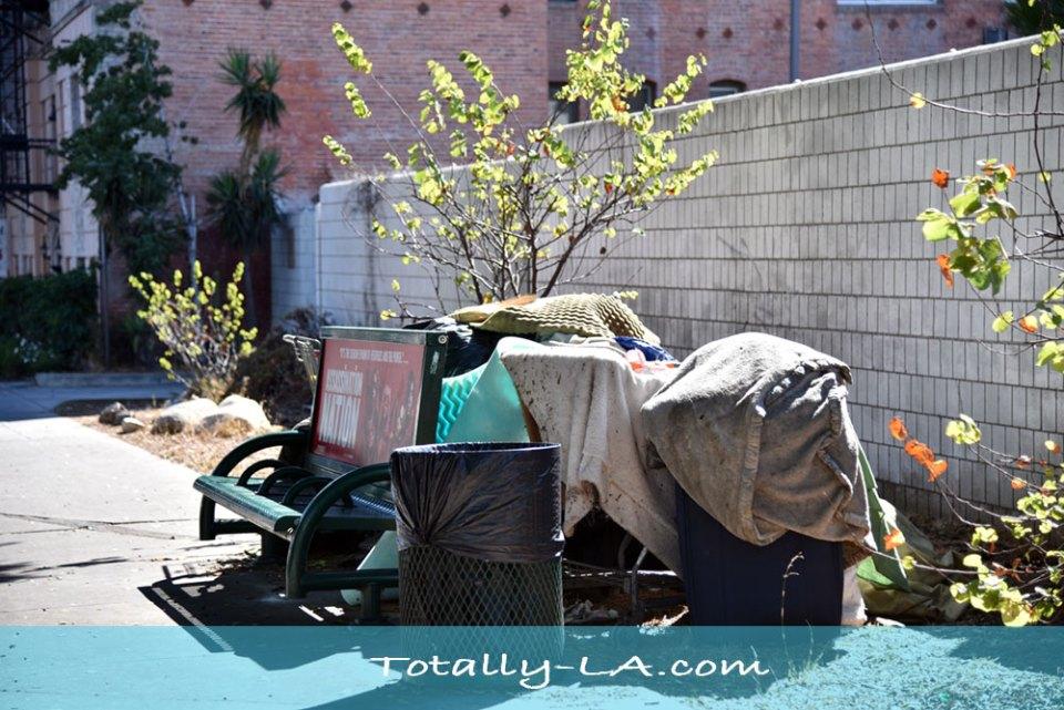 LA Homeless problem