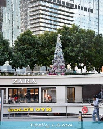 LA Christmas Trees