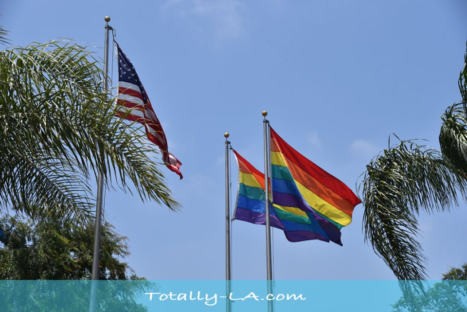 gay prid flags