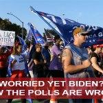 Polls 2020