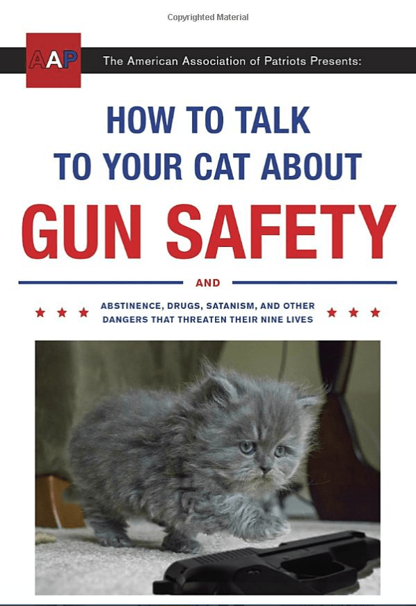 How to Talk to Your Cat About Gun Safety for Christmas stocking filler