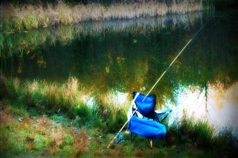 3d368-0471fishing