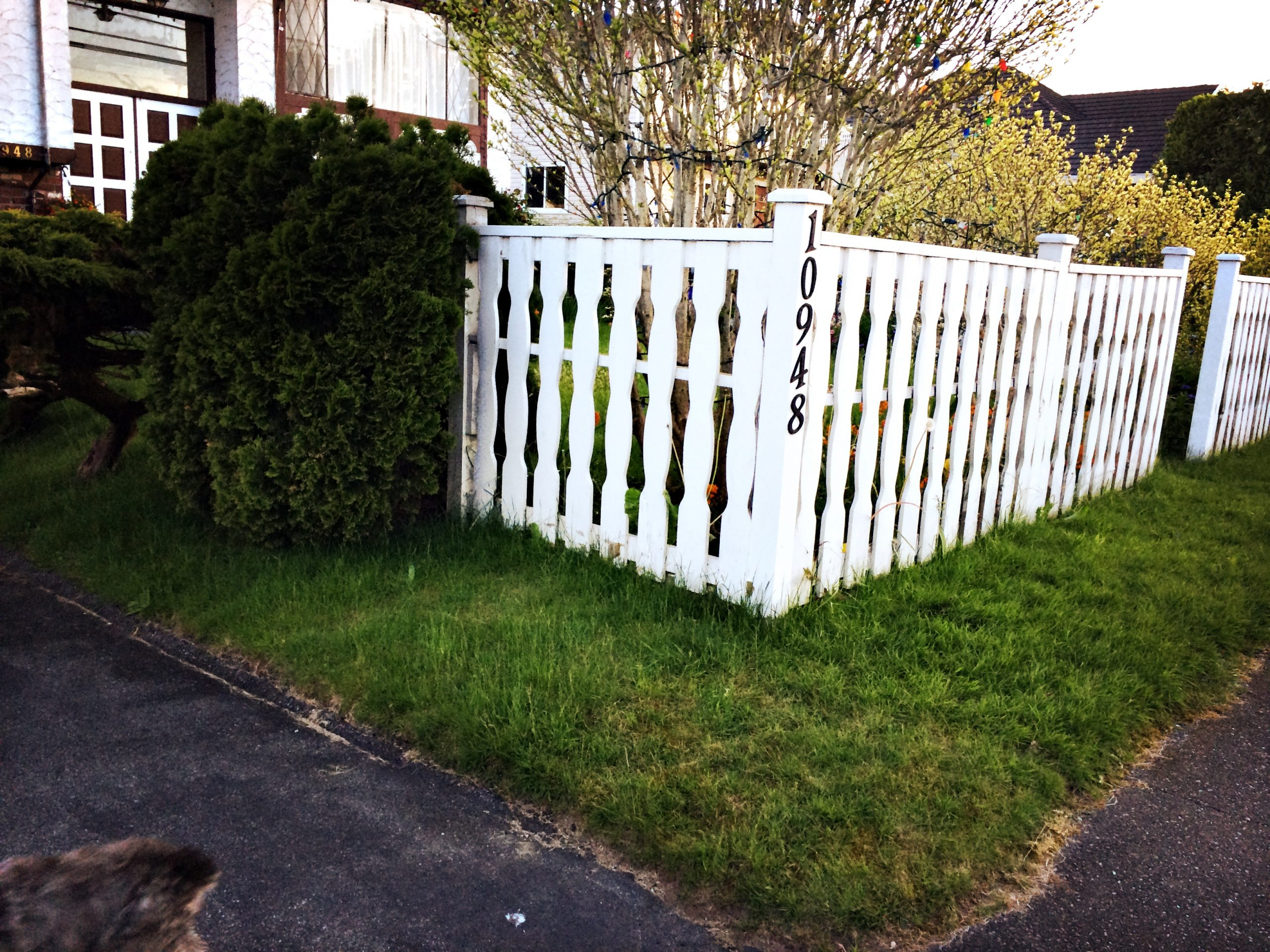 I Want A White Picket Fence