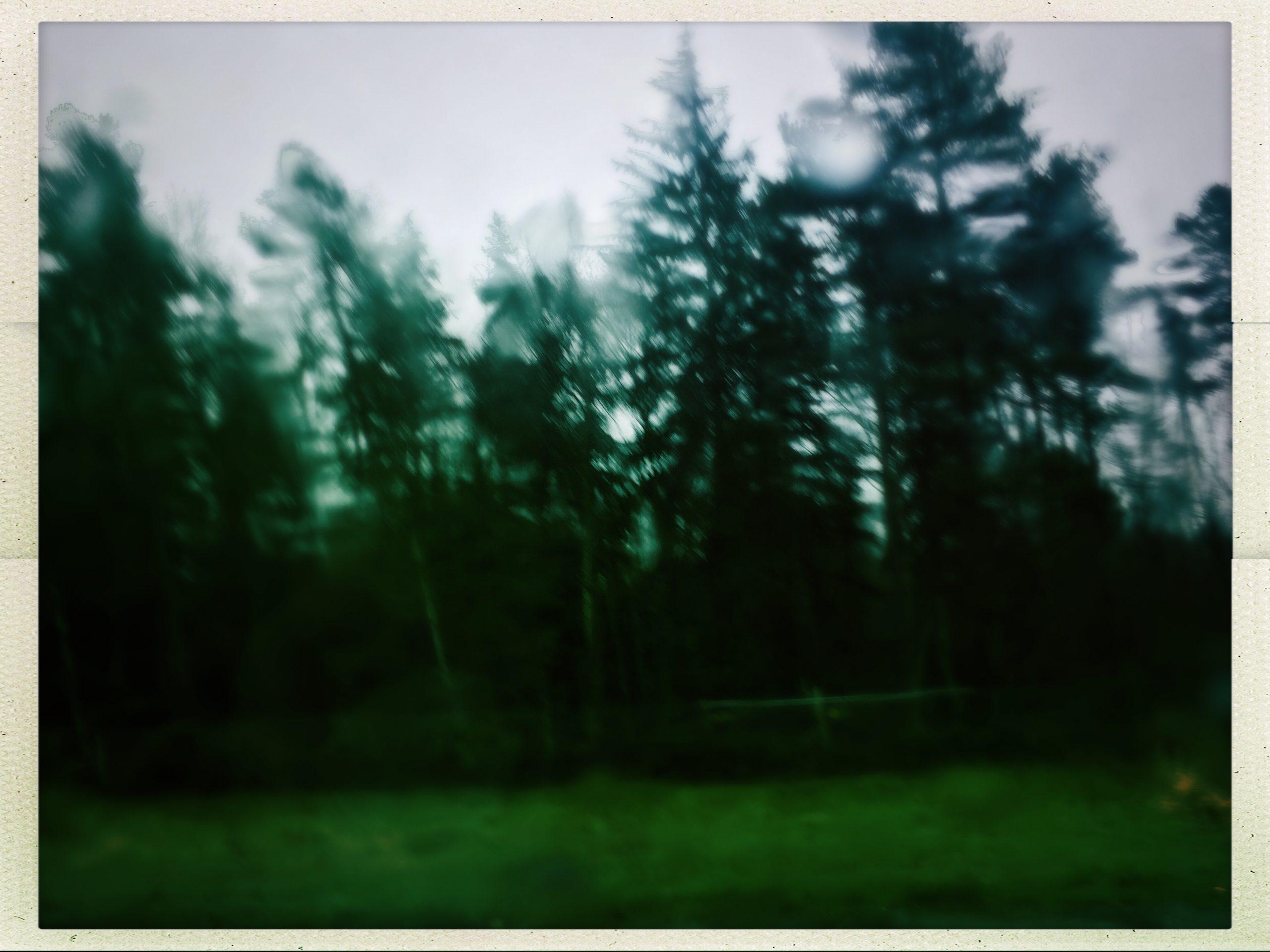 Lost… Like tears in rain
