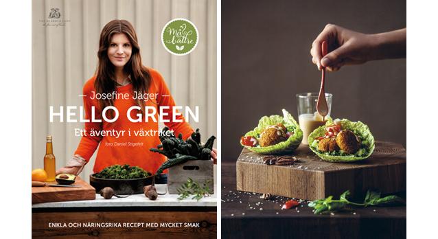 Bilderesultat for hello green boken