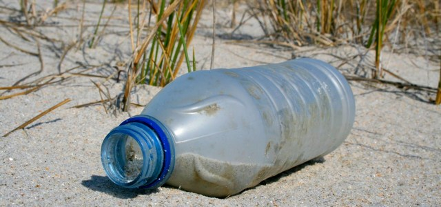 A beach cleanup will be from 10 a.m. to noon at five St. Johns County beaches.