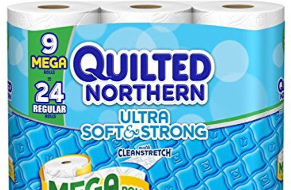 New Red Plum Coupons: Quilted Northern & More