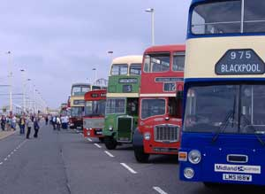 2006, Big turn out of buses.