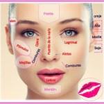 Brochas para maquillaje tipos y modos de uso