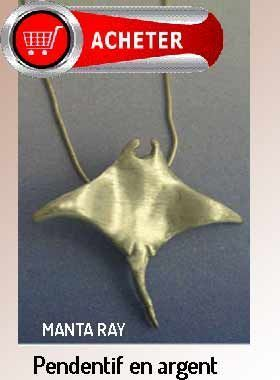 manta ray pendentif argent bijoux signification symbole