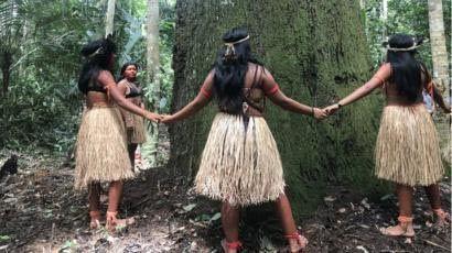 tribus salvages