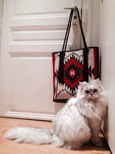 Cat & Bag Paris Apartment