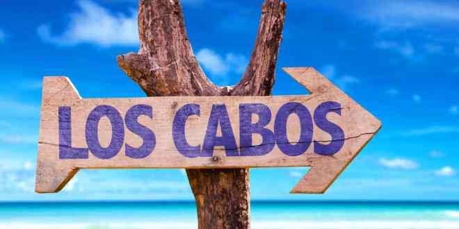 visit los cabos green fest this fall season