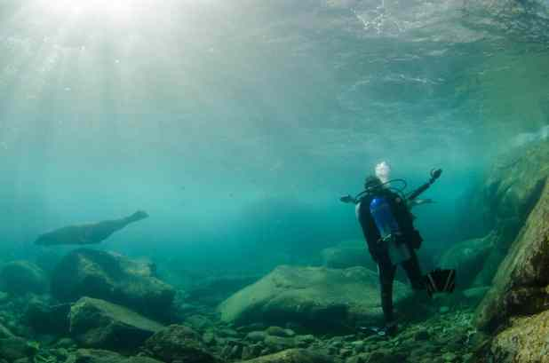 Top Reasons to Visit Cabo Pulmo National Marine Park (1)