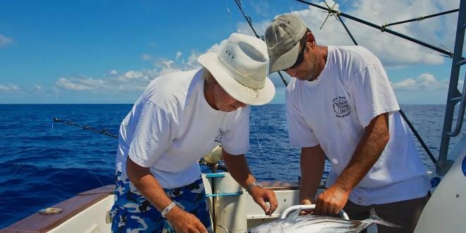 fishing season in los cabos
