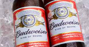 Budweiser Bottles On Ice