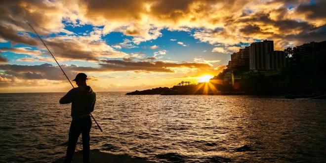 Marina Fiesta Resort and Spa Highlights Fishing Season in Cabo