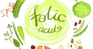 the importance of folic acid