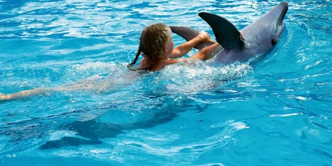 Hacienda Encantada Resort and Spa Reveals Best Marine Adventures in Cabo