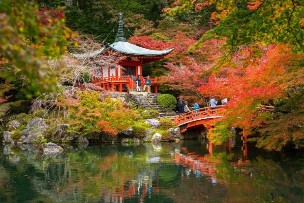 Autumn pagoda and ancient bridge