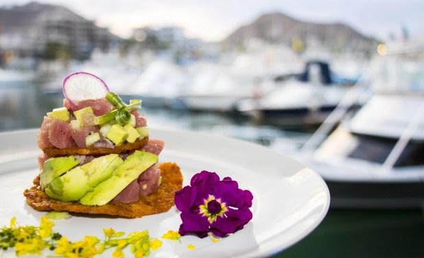 Marina Fiesta Resort & Spa Updates Kids Club at Los Cabos Marina 1