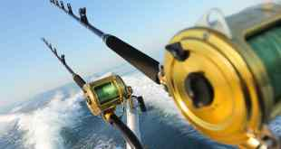Fishing Tournaments in Los Cabos 2018 (2)